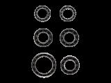 Kit rodamientos Ceramicspeed DT Swiss 4
