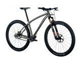 Bicicleta mtb PILOT Duro titanio 29″